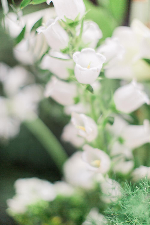 flowers het laer